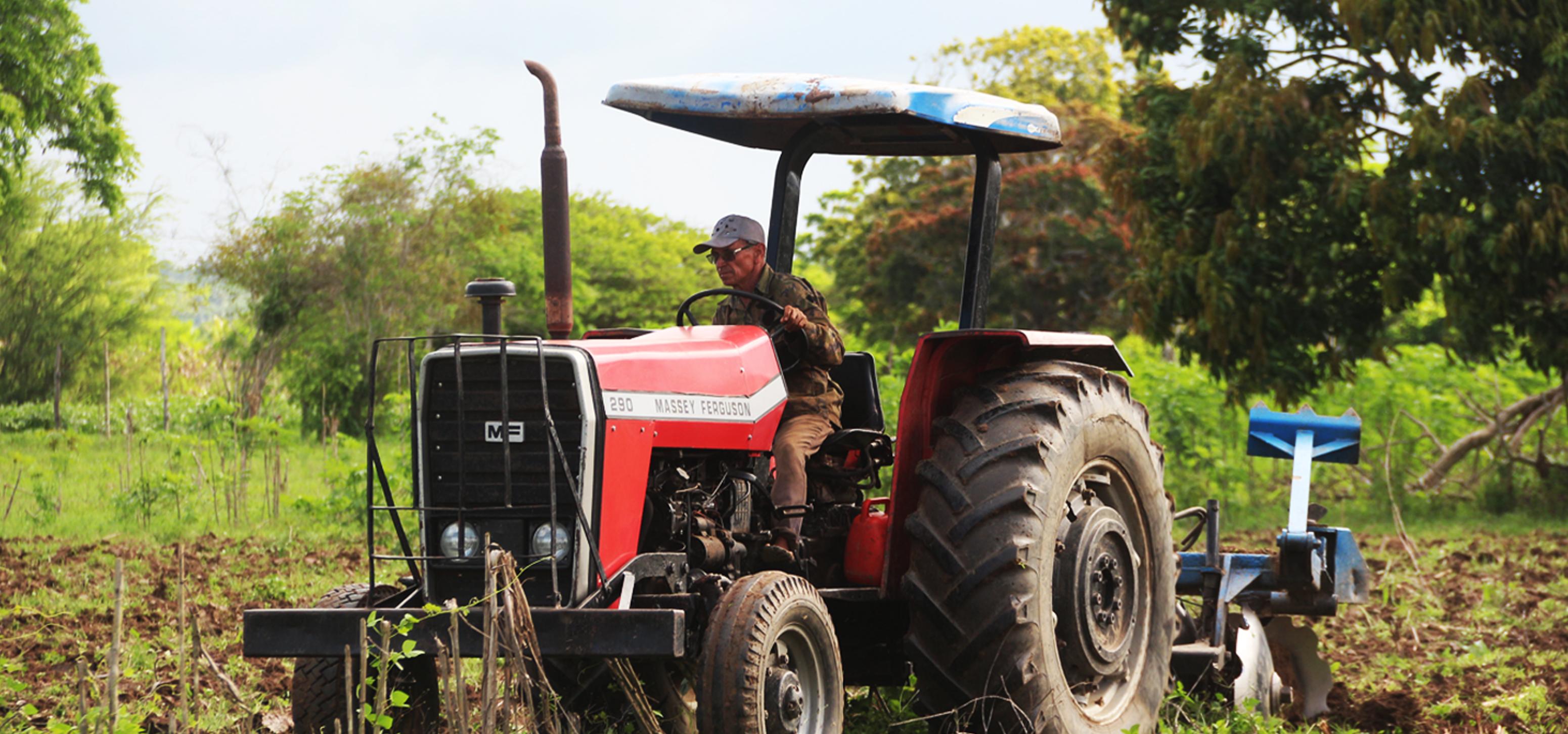 Conheça os programas de incentivo da secretaria de Agricultura para os pequenos produtores rurais