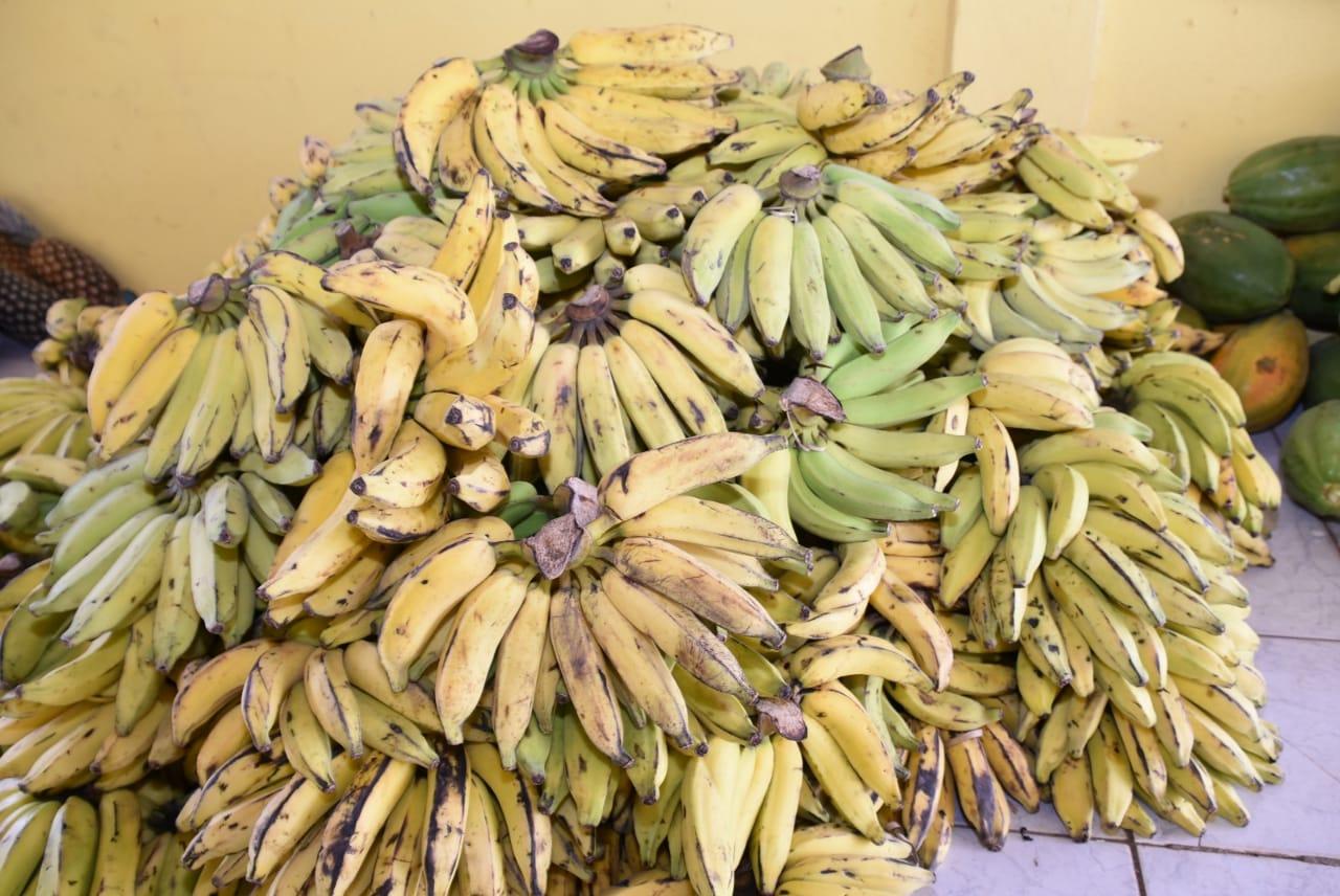 Além do Comida Boa, Semtasc distribui frutas às famílias carentes