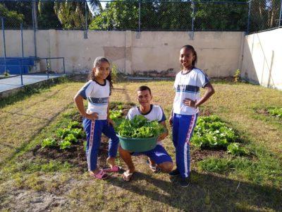 """Escola municipal de Alagadiço desenvolve projeto """"Horta na Escola"""""""